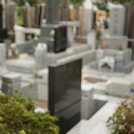 墓地を確認